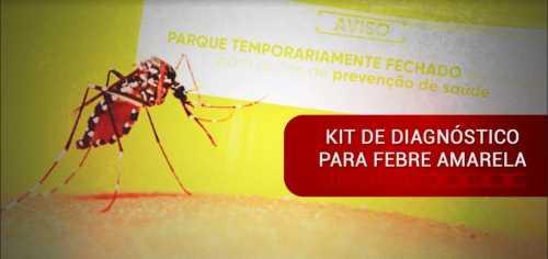 Preocupado com o surto da febre amarela? Saiba como diagnosticar