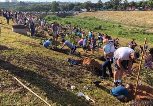 Prefeitura de Limeira apoia projeto da Unimed, que promoveu plantio de 300 árvores