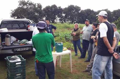 Curso de fruticultura e podas de árvore é concluído em Cordeirópolis