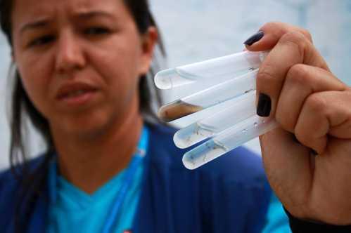 """Imóveis com criadouros da dengue mantêm situação de """"alerta"""" em Limeira"""