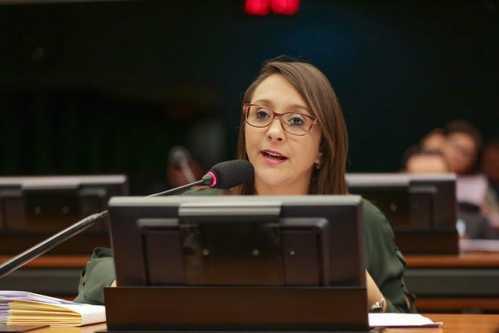 Projeto de Renata Abreu, em defesa da mulher, vai à sanção presidencial