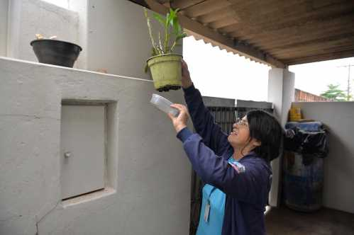 Índice de infestação da dengue revela situação de alerta em Limeira