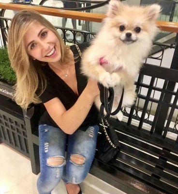 Cãozinho mais fofo da internet, Boo, motivou milhares de pessoa a ter pets da raça spitz alemão