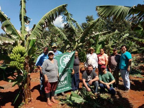 Produtores rurais participam de curso de cultivo de bananas em Cordeirópolis