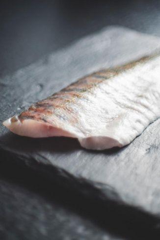 Salmão e Atum – Saudáveis e saborosos, peixes nobres caíram no gosto dos brasileiros