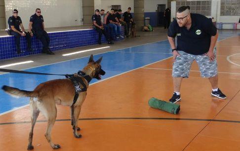 Prefeitura de Limeira promove seminário sobre cães de polícia