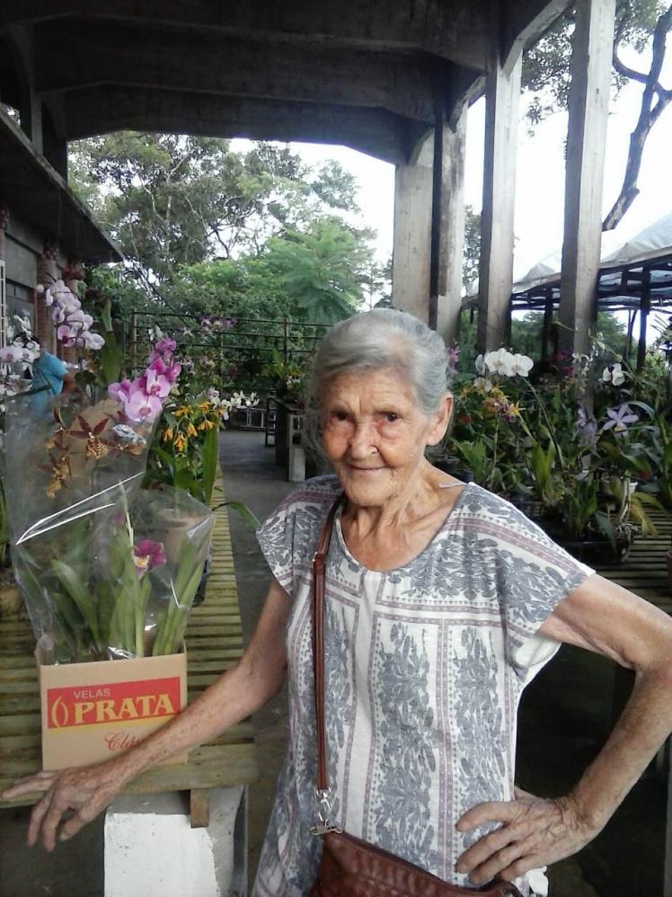 Ida Milaré Damelio