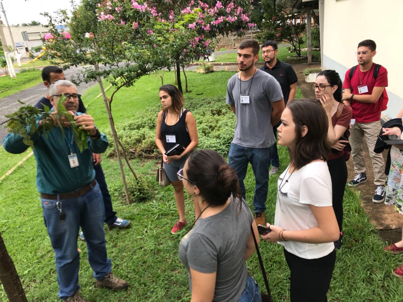 Censo arbóreo mapeia mais seis bairros de Limeira