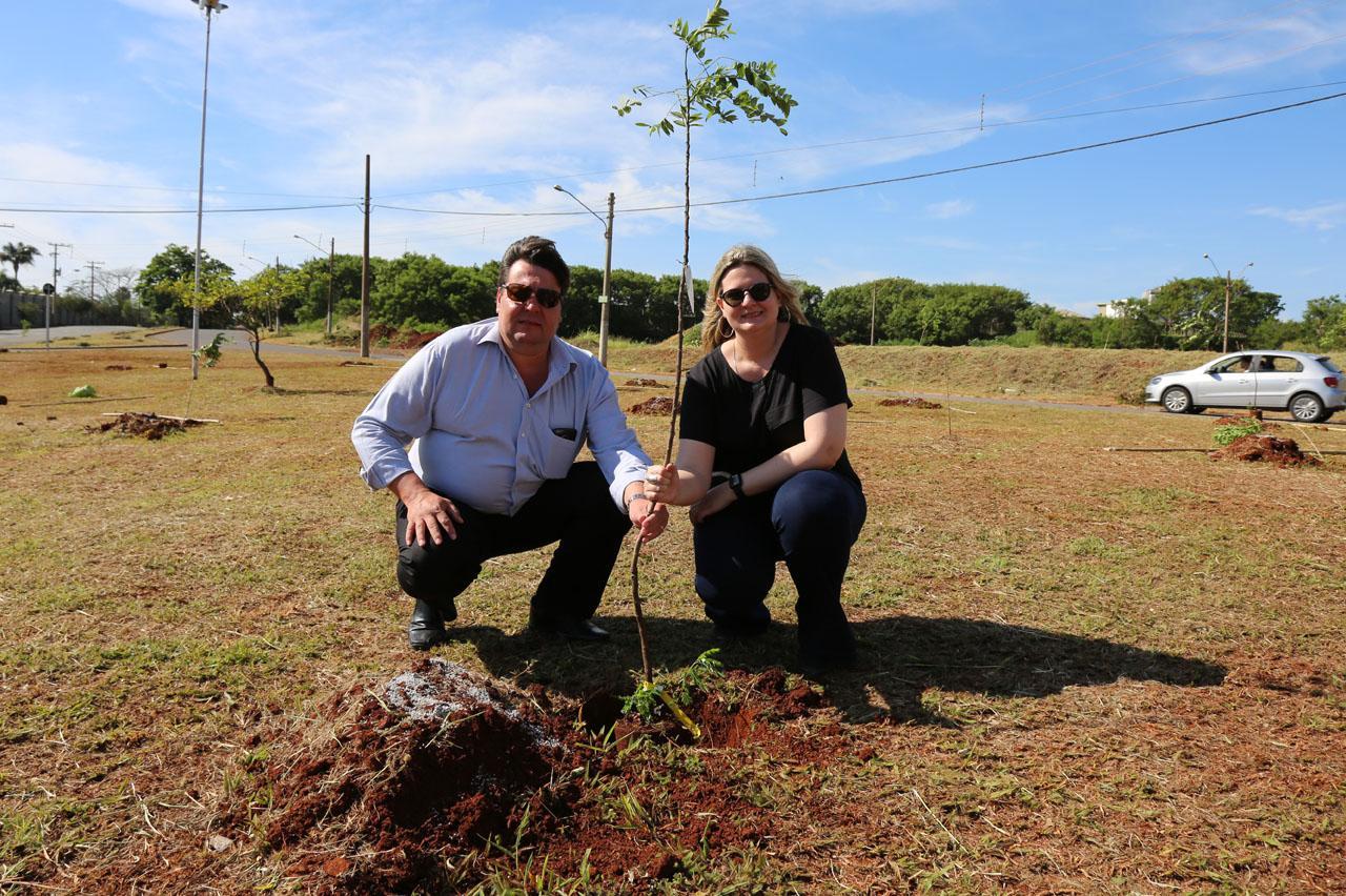 Árvores são plantadas em Limeira para lembrar vítimas de acidentes de trânsito