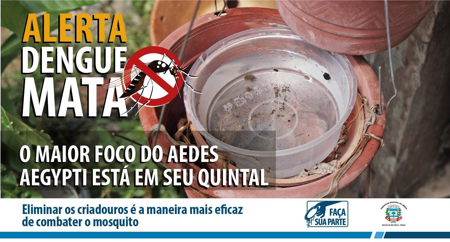 Com 1.424 confirmações de dengue em Limeira, Saúde faz alerta