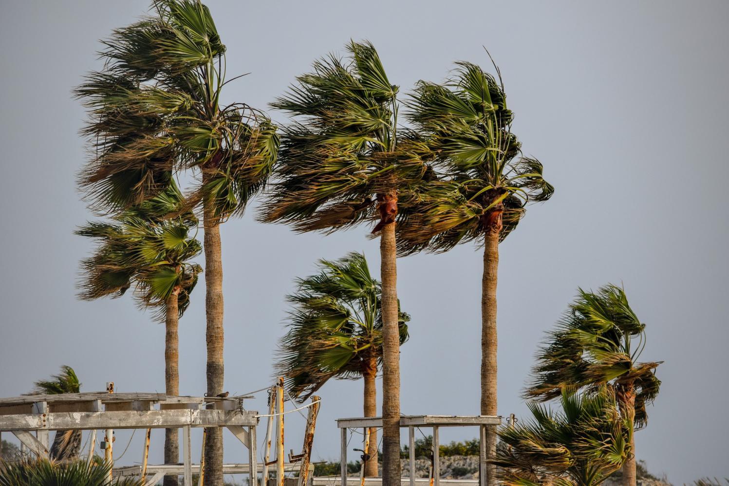 Rajada de vento: saiba o que é e os danos que ela pode causar