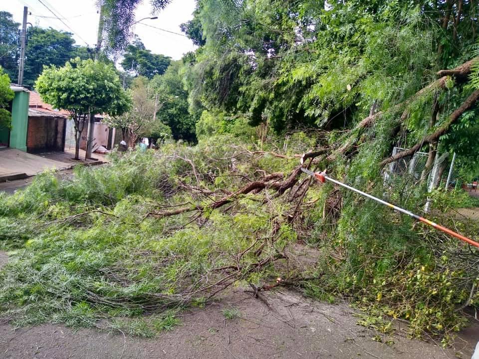 Equipes da Prefeitura de Cordeirópolis realizam operação de limpeza após chuvas