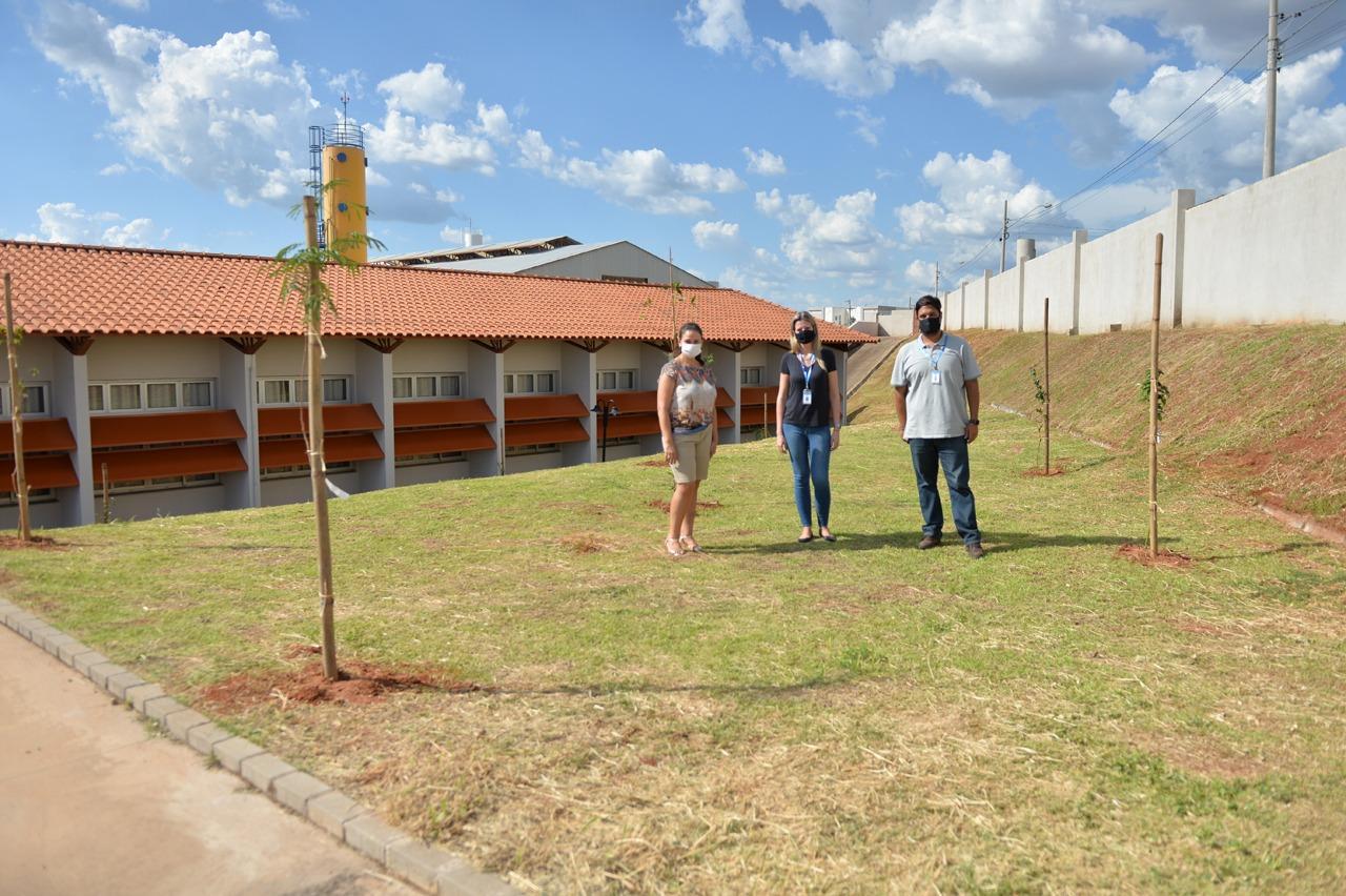 Escola do Residencial Rubi em Limeira recebe plantio de 55 árvores