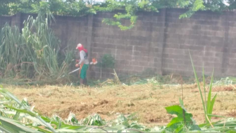 Limpeza das áreas públicas do bairro Jardim do Bosque em Cordeirópolis