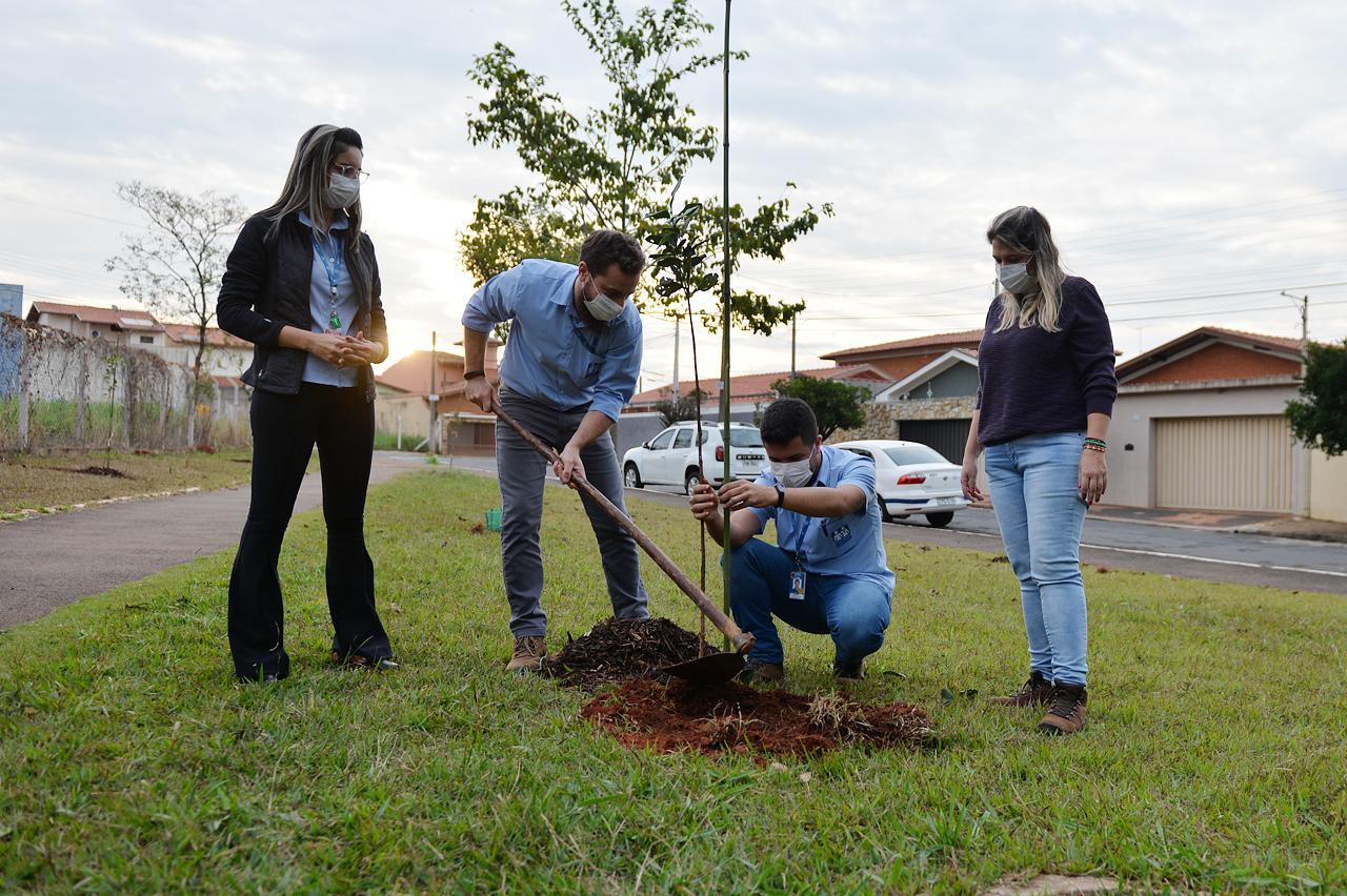 Prefeitura e Santa Casa de Limeira realizam plantio de mudas