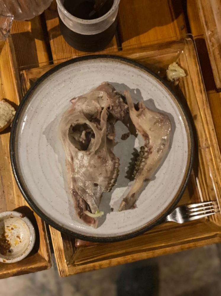 Tubarão podre e carne de cavalo: conheça quatro iguarias típicas da Islândia