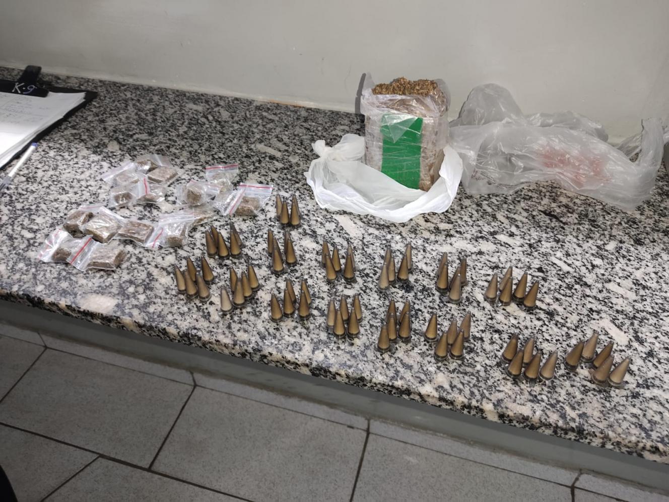 Cadela Safira fareja entorpecentes em área verde do Cecap em Limeira